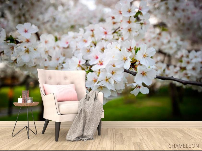 Фотообои Абрикосовые маленькие цветочки - 4