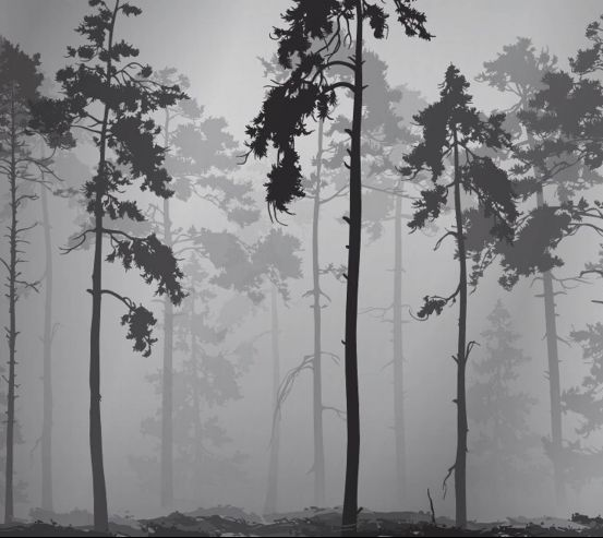 Фотошпалери ЧБ дерева 26002