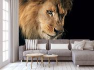 Фотообои морда льва - 3