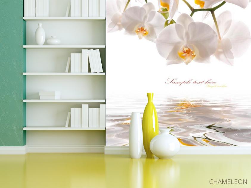 Фотообои Орхидеи белоснежные - 3