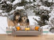 Фотообои Волки в снегу - 1