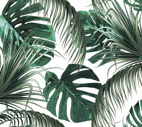 Фотообои Зелёные тропические листья 23498