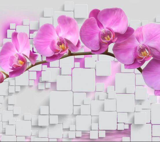 Фотообои Орхидеи 19802