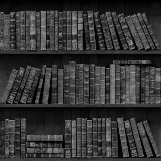 Фотообои книги на полке