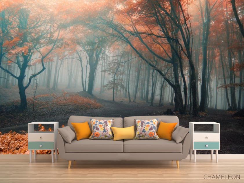 Фотообои осенний лес - 1
