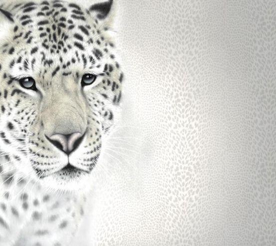 Фотообои Фотообои Чб тигр 22319