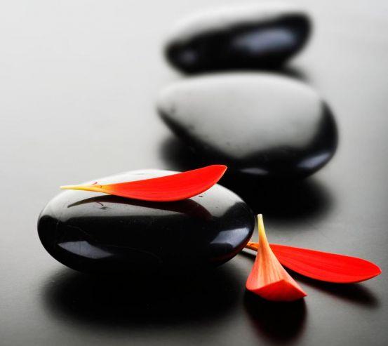 Фотообои Три лепестка и камни 3094