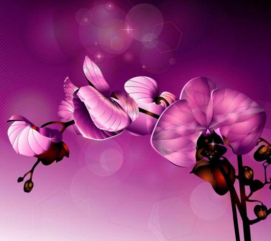 Фотообои Орхидеи фиолетовые 8912