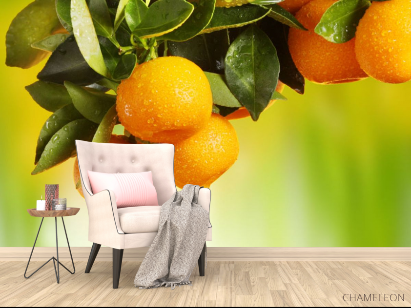 Фотообои Сочные апельсины - 4