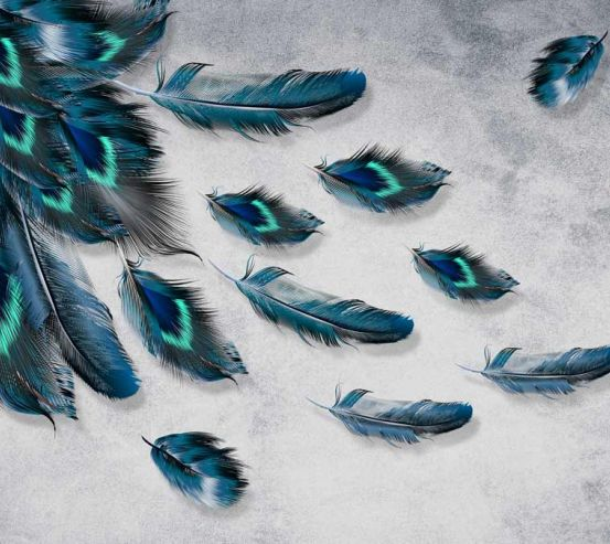 Фотообои Бирюзовые перья 22100