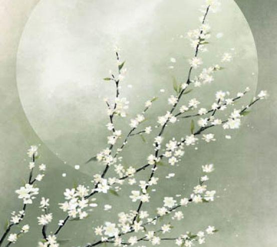 Фотообои Зелёная ветка сакуры 28984