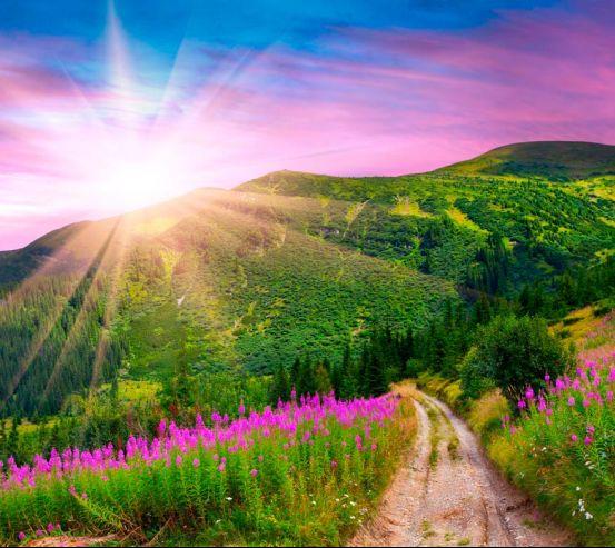 Фотообои Спуск, гора, зелень 10766