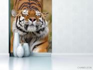 Фотообои тигр потягивается - 1