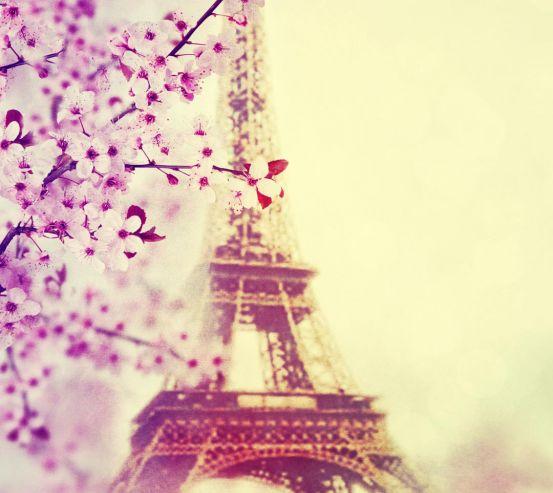 Фотообои весна в Париже 20855