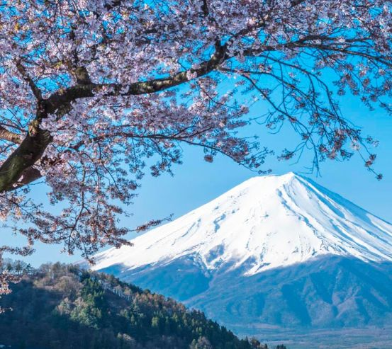 Фотообои Гора, снег,цвет 11934