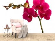 Фотообои Ветка бардовых орхидей - 4