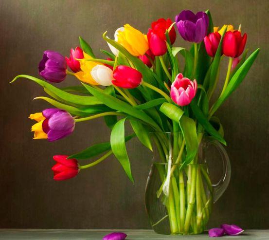 Фотообои Кувшин с тюльпанами 5186