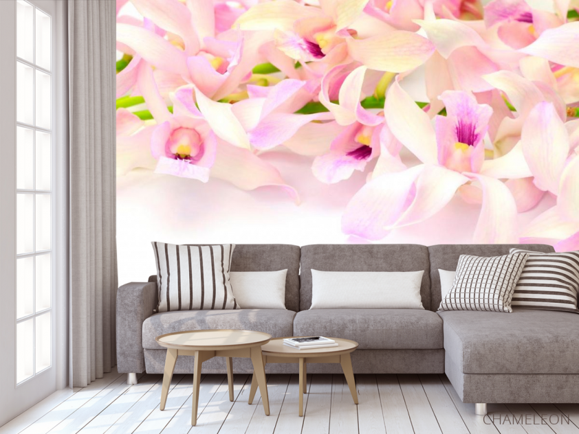 Фотообои Нежно-розовые орхидеи - 3