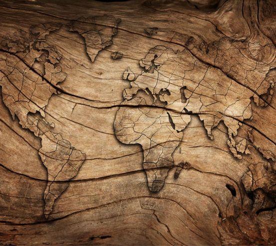 Фотошпалери Карта з дерева 22410
