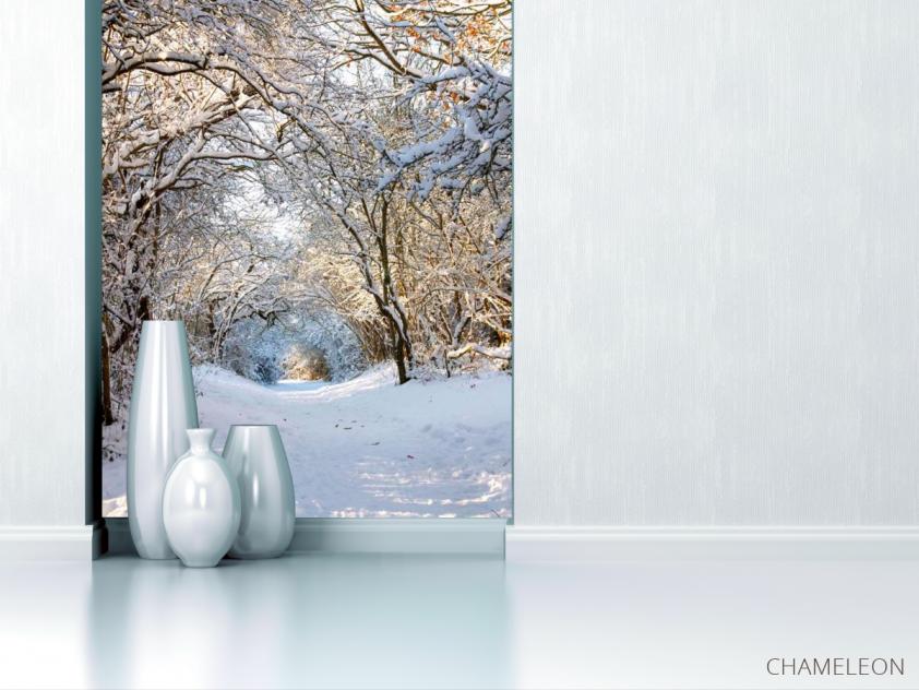 Фотообои Пришла зима - 1