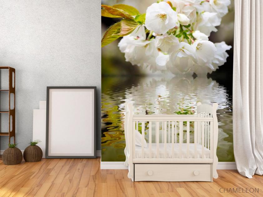 Фотообои Цветы абрикоса над речкой - 2