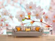Фотообои Цветет абрикос весной - 1