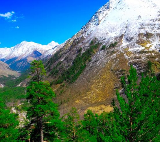Фотообои Месяц, гора, ёль 9105