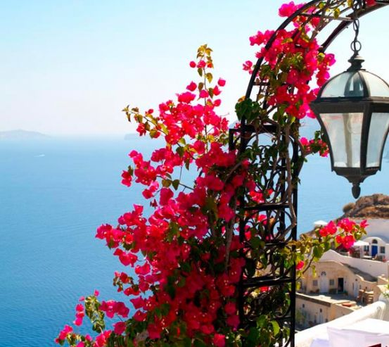 Фотообои Цветы на фонаре,  Греция 5063
