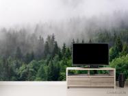 Фотообои Лес в тумане - 2