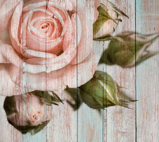 Фотообои Роза на фоне дерева 20046