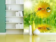 Фотообои божья коровка на листике - 3