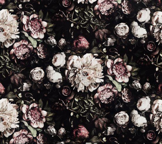 Фотообои Классические цветы на черном фоне 20003
