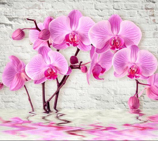 Фотообои 3д орхидея 18762
