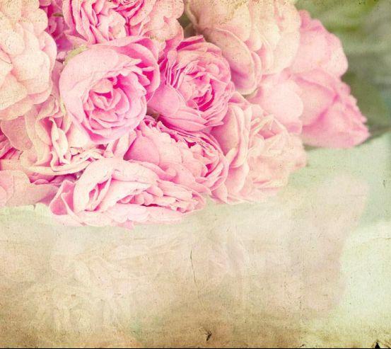 Фотообои Пионы бледно-розовые 10942