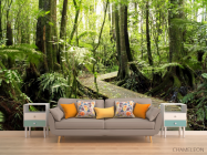 Фотообои деревянная дорожка в лесу - 1