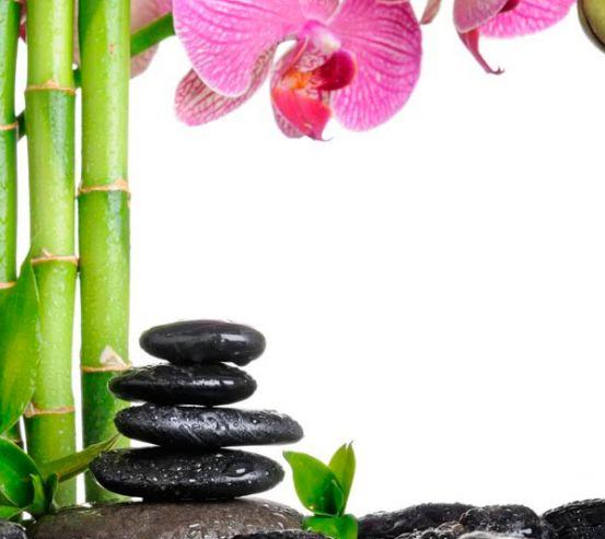 Фотообои Бамбук и орхидея 9014