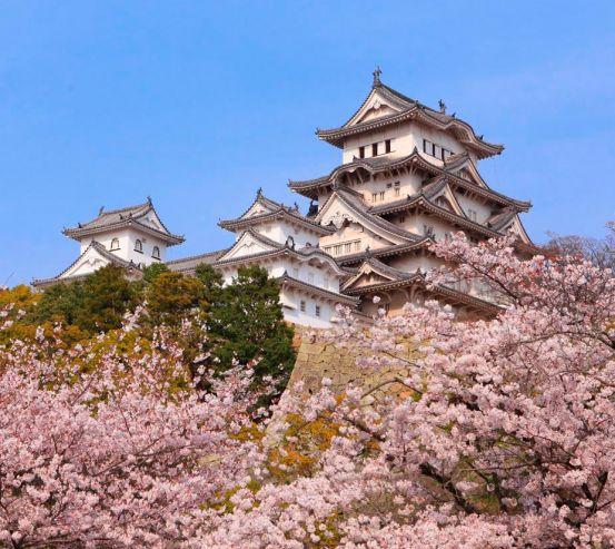 Фотообои Япония 7824
