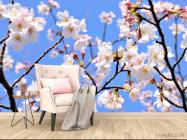 Фотообои Расцвели абрикосы весной - 4