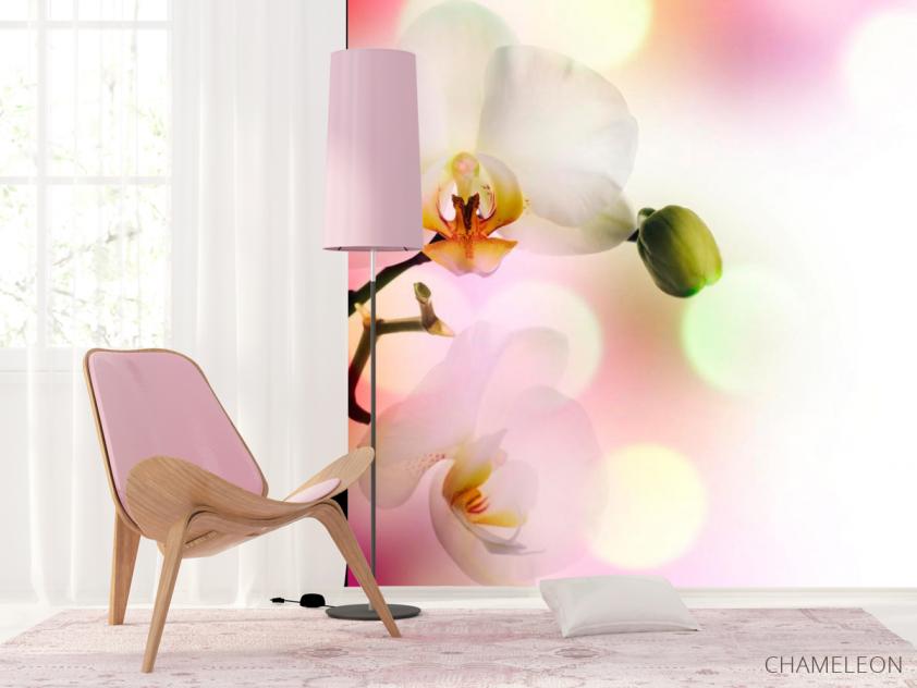 Фотообои Орхидеи цветут - 4