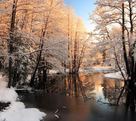 Фотообои Зима, снег 11846