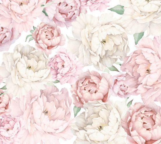 Фотообои Розовые пионы 24254