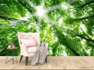 Фотообои свет свозь кроны деревьев - 4