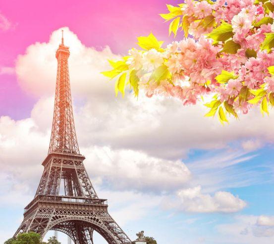 Фотообои розовое небо в Париже 21058