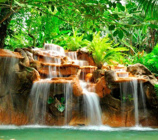 Фотообои Джунгли, вода 7712