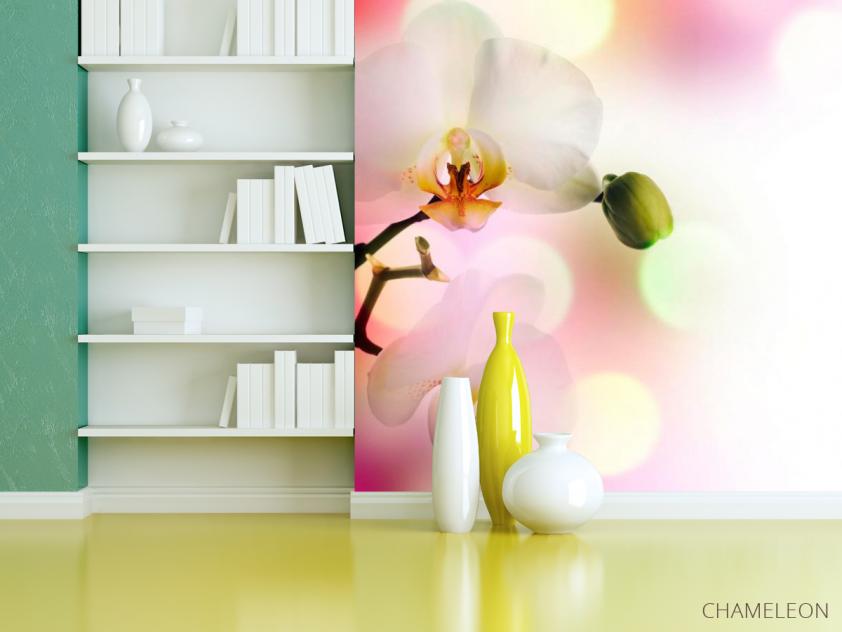 Фотообои Орхидеи цветут - 3
