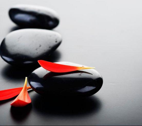 Фотообои Лепестки и камни 3089
