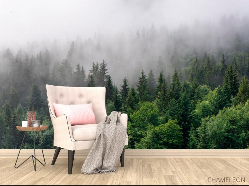 Фотообои Лес в тумане - 4