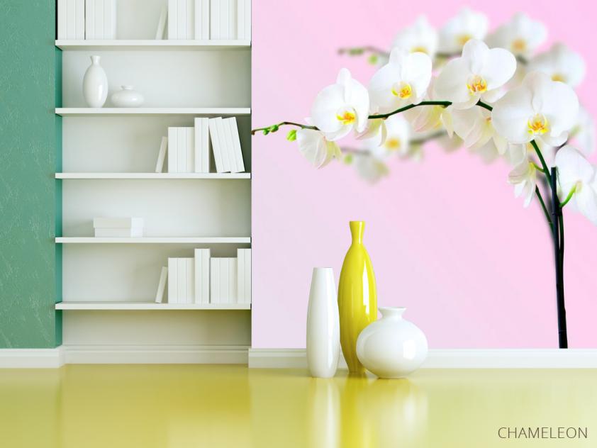 Фотообои Веточка орхидей белоснежных - 3