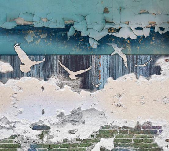 Фотообои Арт,птицы 18697