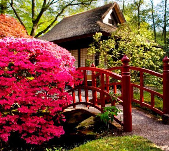 Фотообои Дом, цветы, мост 1435